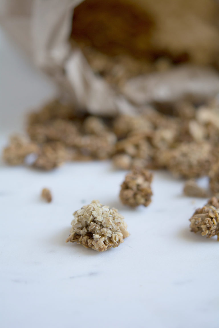 homemade granola photo
