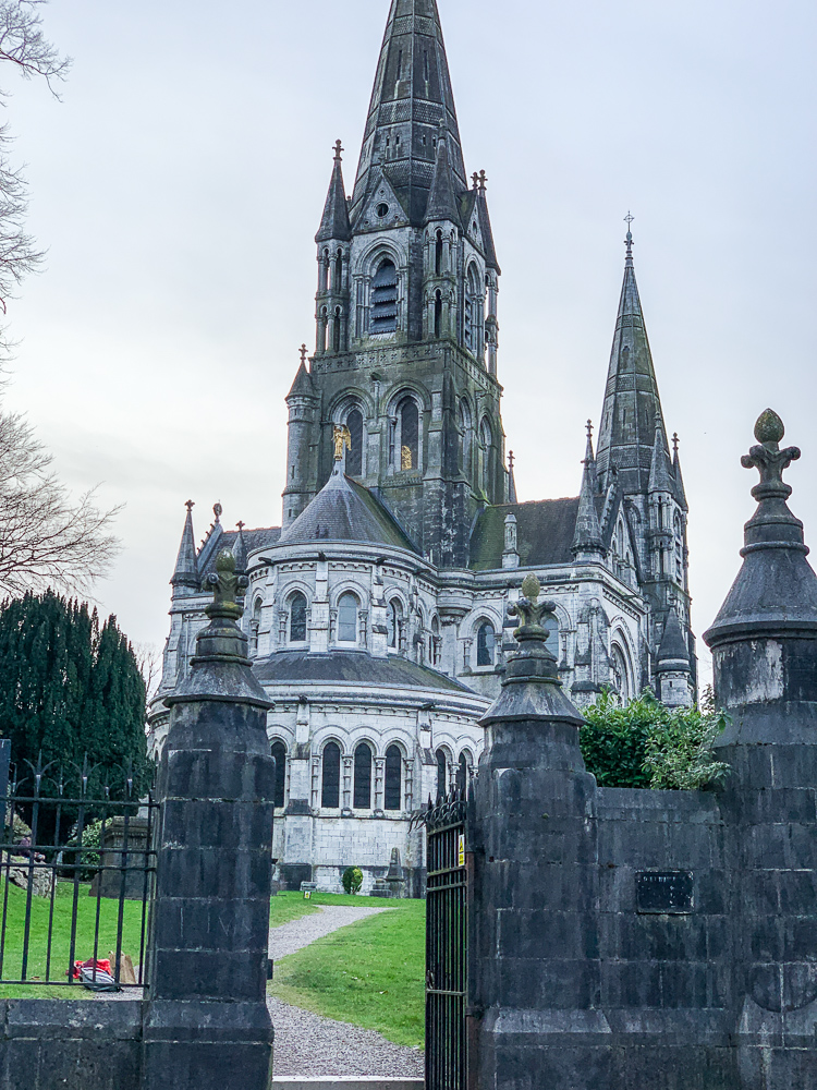 photo of st. fin barrs in cork